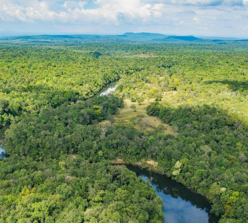 A Glance at the History of the Cardamom Mountains