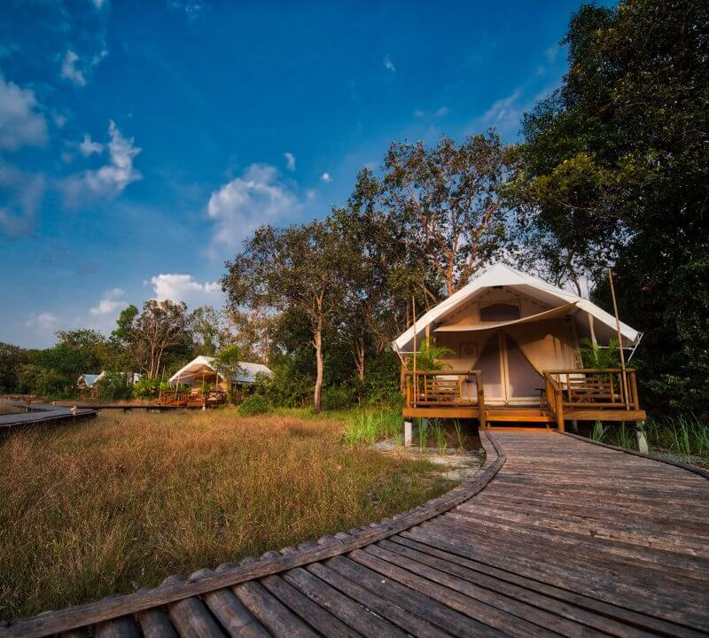 Cardamom Tented Camp