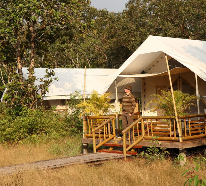 Everything You Need to Know Before Visiting Cardamom Tented Camp